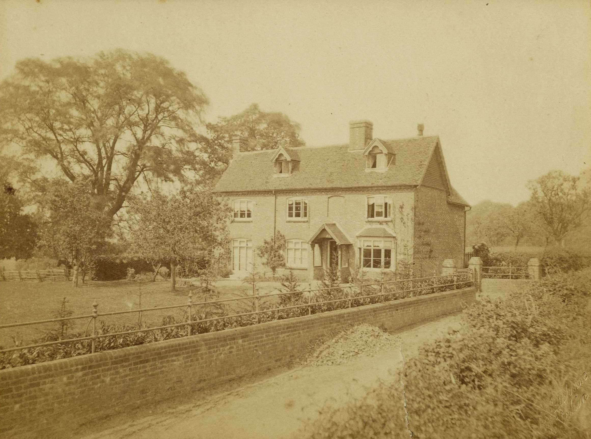 Photograph of Rooksnest showing the wych-elm which plays a part in Howard's End. [EMF/27/181]