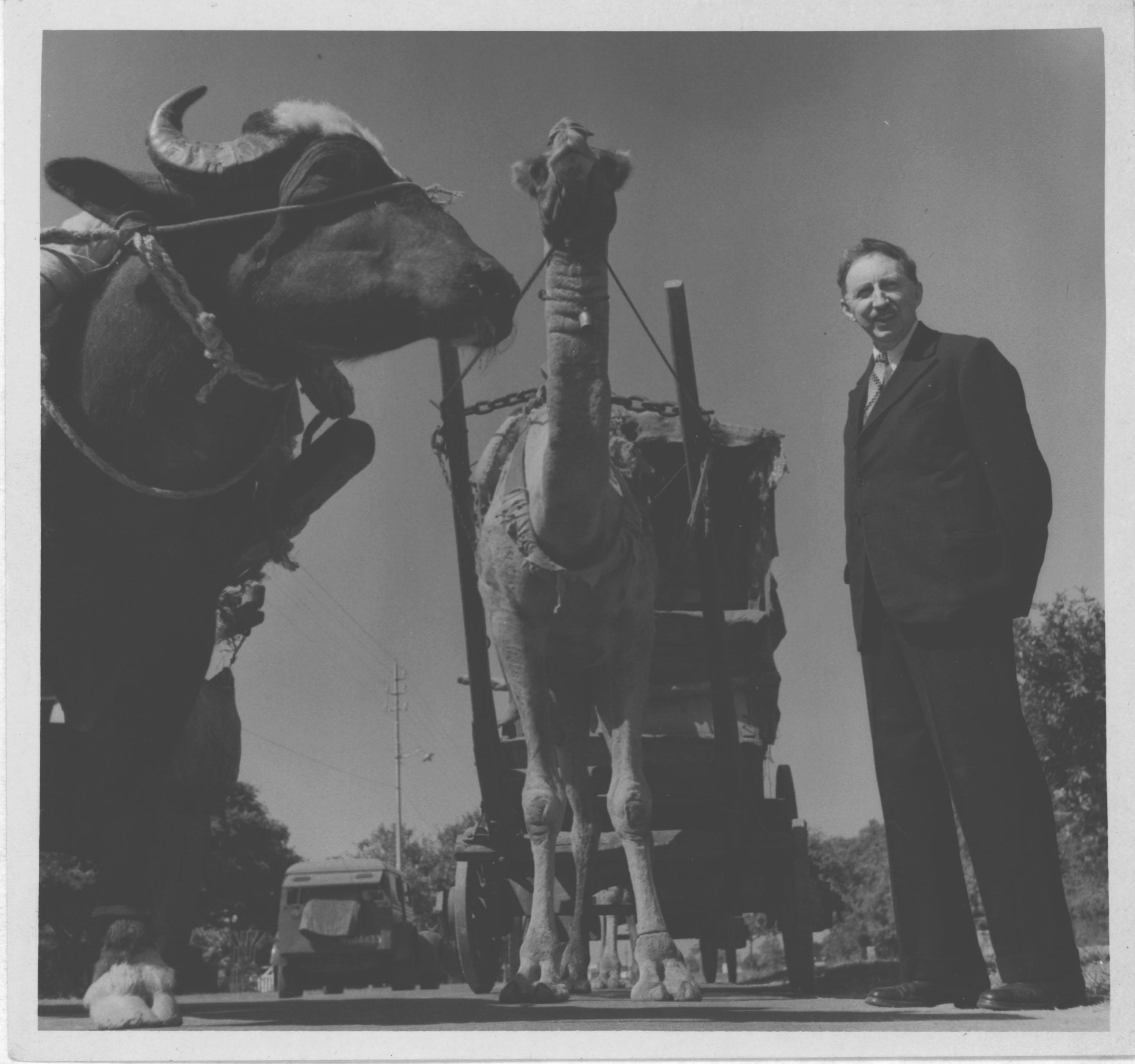 Forster at a bazaar in Delhi, 1945. [EMF/27/574]