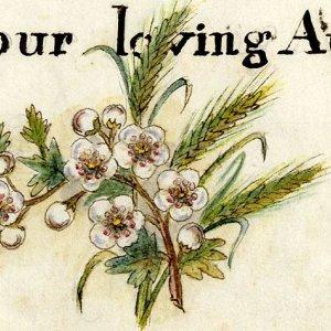 Your loving aunt...