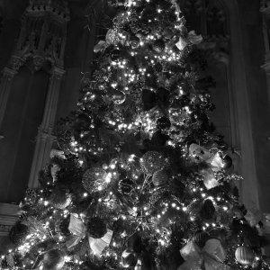 The Hall at Christmas 4