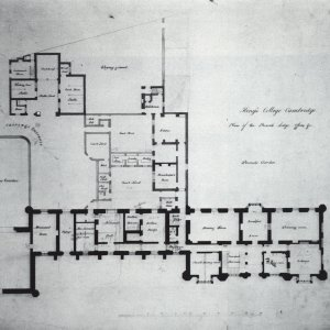 wilkins site plan