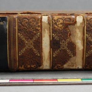 Petrarca 2
