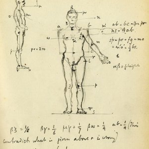 Notes from Leonardo da Vinci's writing on anatomy, physiology and philosophy, c.1885-1899 (REF/4/1/1)